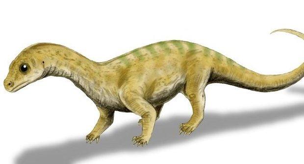 Nový druh dinosaura se skrýval v muzeu