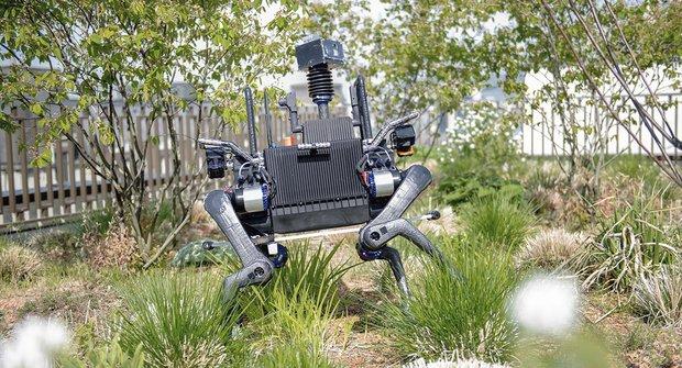 Roboti z Bostonu vyrážejí: Je lidstvo připraveno?