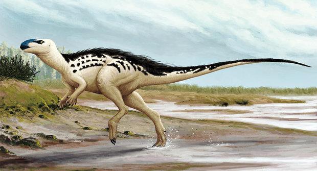Dinosauři z Česka: Megaplazi za domem