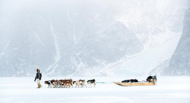 Dobytí Arktidy: Bez psa by to ze Sibiře do Ameriky nešlo