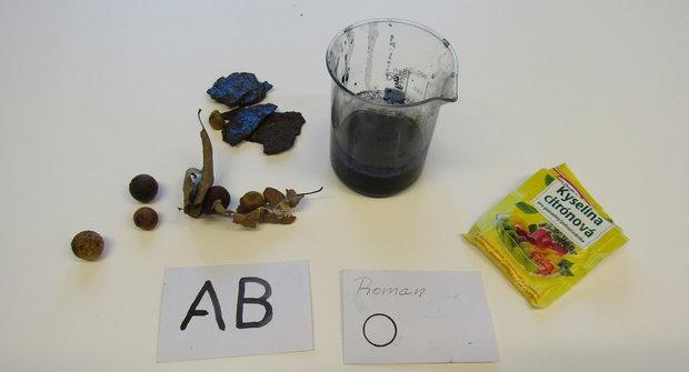 Jak si vyrobit domácí inkoust z listů duběnky