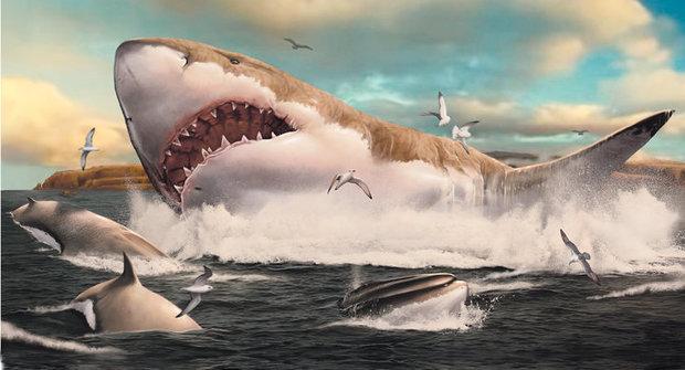 Megalodon: Největší žralok všech dob