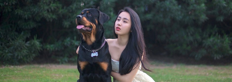 Psí plemena: Rotvajler, pes s dobrým srdcem