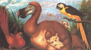Příběhy vyhynulých zvířat: Dodo mauricijský