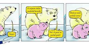 """Džouk týdne: Ani lední medvědi nevědí. """"Nejsem brtník nebo koala?"""""""