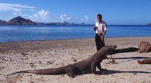 Obrovští varani: Jedovatí draci z bájí