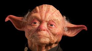 Yoda ze Star Wars je živý