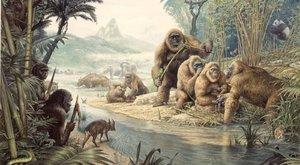 """Proč vyhynul """"King Kong"""": Naši předkové se s ním potkali!"""