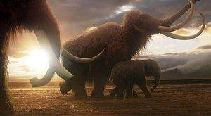 Pitva mamuta: Kdo byl vrahem prazvířete ze Sibiře?