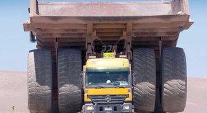 Kamión nebo angličák? Prcek převáží obra