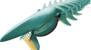 """Gigantický členovec: Dvoumetrová pravěká """"velryba"""""""