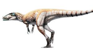Megaraptor objeven na nečekaném místě