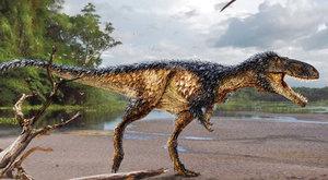 Tyranosaurid, na kterém by se dalo jezdit