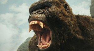 Kong: Kdo objeví Ostrov lebek?