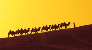 Hedvábná stezka: Cesta spojující národy