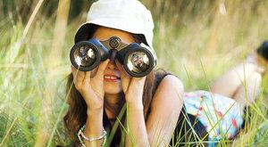 Birdwatching: Pracovní listy