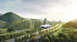 Lesní město: Čínský boj se znečištěním