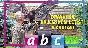 S ABC TV za čáslavskými dravci