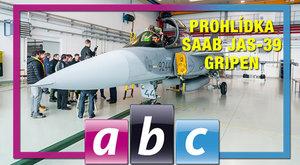 ABC TV Gripeny: Kompozitní ptáci u armády v Čáslavi