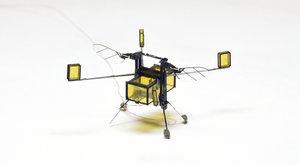 ROBOBEE 2.0: Obojživelný hmyzák