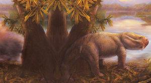 Pravěký fantom: Záhada afrických dicynodontů