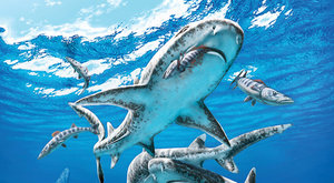 Úsvit moderních žraloků: Nadvláda žralounů