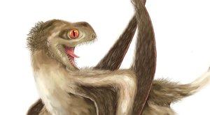 Opeřený ptakoještěr překvapil vědce