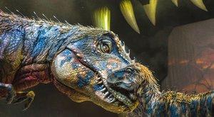 Dinosauři v aréně: Nejnovější poznatky