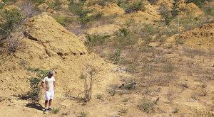 Největší termitiště: Co dokážou malí stavitelé