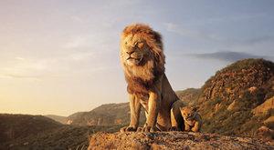 Lví král: Simbův návrat do kina