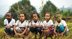 Etiopie: Světový rekord v sázení stromů