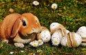 Velikonoce v různých částech světa