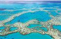 Útesy Velké korálové bariéry