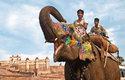 Slon a jeho mahut