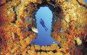 Vědci předpokládají, že podobné neznámé ekosystémy, jaký objevili u Curacaa, skrývají i další korálové útesy na světě