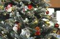 Užijte si šťastné a veselé a Odhalte tajemství Vánoc se speciálem ABC