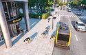 Doručovací roboti vybíhají z autonomního poštovního autobusu