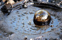 V La Brea vybublává z hlubin země přírodní asfalt