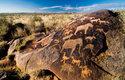 Afričtí lovci a sběrači lajkují už déle než 30 tisíc let