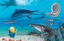 Kořistí většiny druhů ichtyosaurů byli hlavonožci a ryby