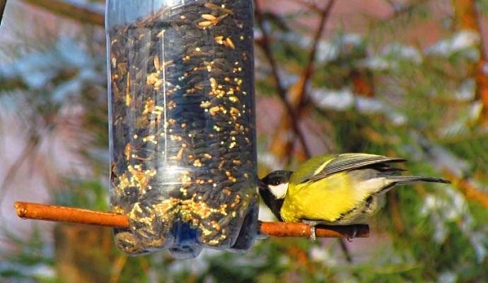 Dolů nalepte větvičku, na kterou si ptáček sedne. A pozor na přeplnění krmítka – čím větší uděláte otvor, tím častěji doplňujte menší množství zrníček. Zdroj fotky: www.domky-delta.cz
