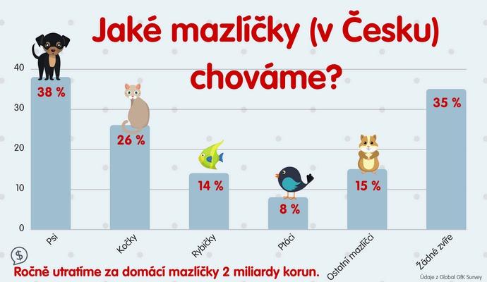 Domácího mazlíčka má v Česku víc než polovina domácností.