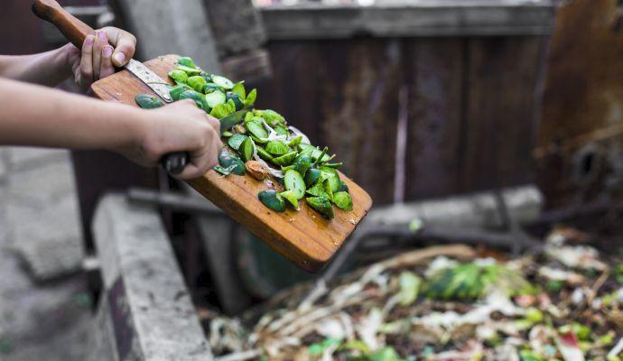 Kompost prospěje vaší zahrádce i květinám, které máte doma.