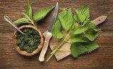 3 svěží jarní recepty s dary přírody